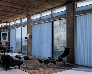 Duette vertiglide blinds for hands-free light control. Looks great!