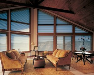 Silhouette easyrise, hand-free brown window coverings.