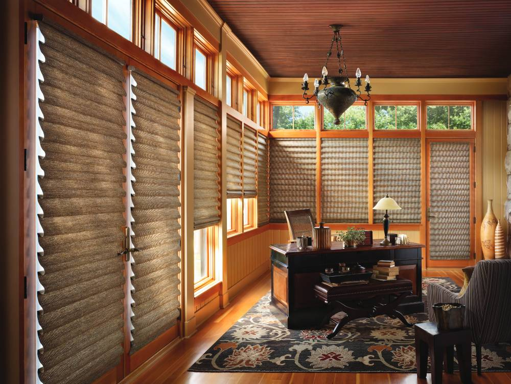Vignette roman shades in a local home office.